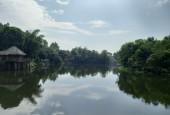 Chính chủ cần bán 1,5 ha lưng tựa núi chân đạp thủy,sát Đô Thị Xanh Villa có ao trong đất tại Tiến Xuân Thạch Thất