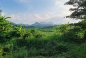Bán trang trại khu nghỉ dưỡng 3634m2 view cánh đồng,vườn cây ao cá giá rẻ
