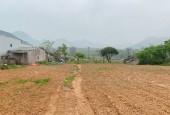 Mảnh đất vườn gần 4000 m2 đầu tư du lịch tại Mộc Châu