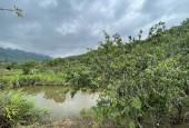 Mảnh đất trang trại diện tích lớn gần khu du lịch thác Dải Yếm, Mộc Châu