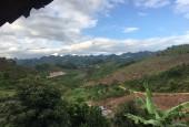 Bán 40.000m2 đất tại Mộc Châu- Giá đẹp đầu tư các loại hình kinh doanh