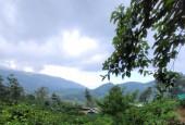 Bán mảnh đất làm Homestay vew thung lũng tại Phìn Hồ, Y Tý( SaPa2)
